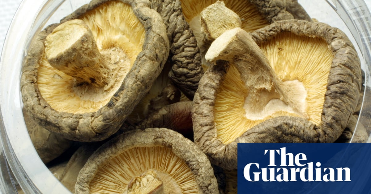 How can I be allergic to shiitakes, but fine with other mushrooms