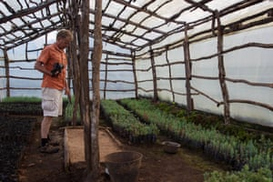 MMCT director Carl Bruessow inspects one of 13 nurseries on Mount Mulanje growing seedlings for the replanting effort