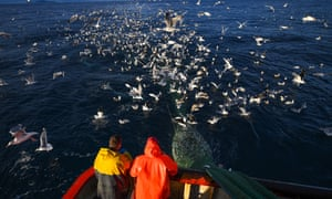 Crew members of the Radiant Star fishing in the North Sea in Shetland
