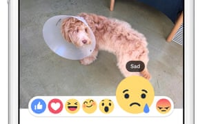 A sample post featuring Facebook's new Reactions buttons.