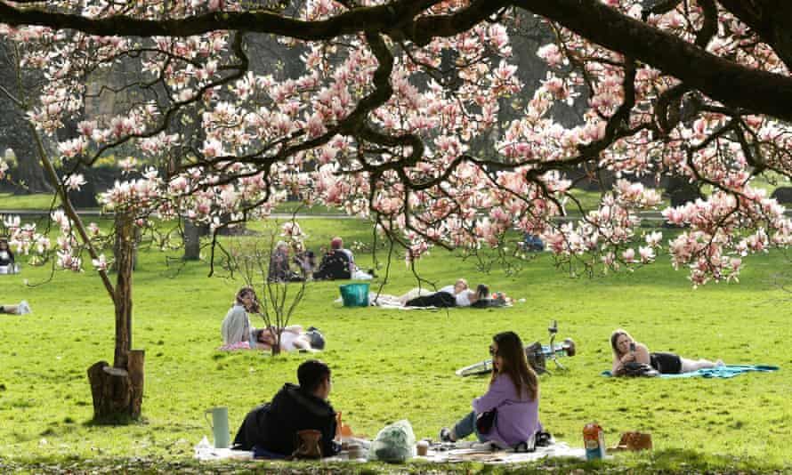 People meet outdoors in Bute Park, Cardiff.
