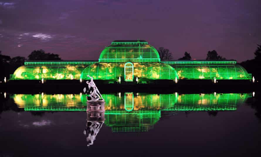 The Palm House at Kew is lit green for a Christmas event.