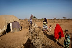 Tirig, who is six years old (in red), and her sister Saua follow their mother to herd their few remaining goats, outside their temporary shelter in Burao