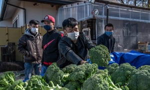 Vietnamese migrant workers made jobless and homeless by the coronavirus pandemic unload donated broccoli from a van at Daionji Temple on February 20, 2021 in Honjo, Japan.