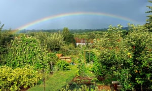 rainbow from allotment callout 2019