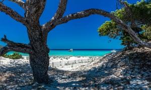 France, Corsica, Mediterranean sea, Haute-Corse, Saleccia beach