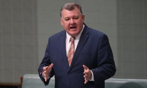 Liberal MP Craig Kelly said 'I think realistically we would need more time to consider' the national energy guarantee as 'there is a lot of complex detail yet to be released'.