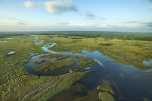 Aerial view of Florida's Everglades