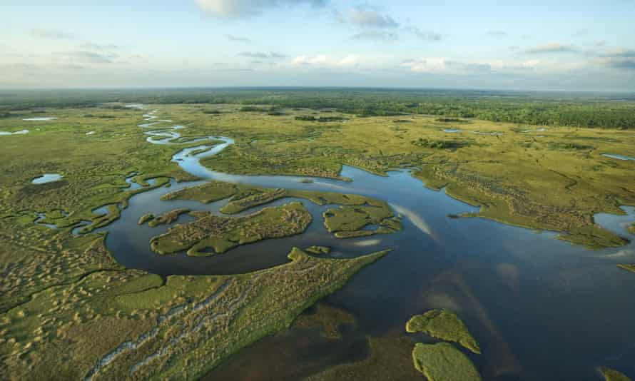 Cleaning up the fragile Everglades wetlands is one of the top priorities of Governor Ron DeSantis, who has unveiled a $2.5bn package, which also aims to tackle rising seas and block offshore drilling.