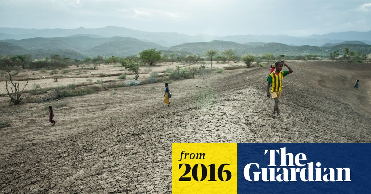 Climate scientists condemn article claiming global temperatures are falling