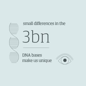 Small differences in the 3 billion DNA bases make us unique