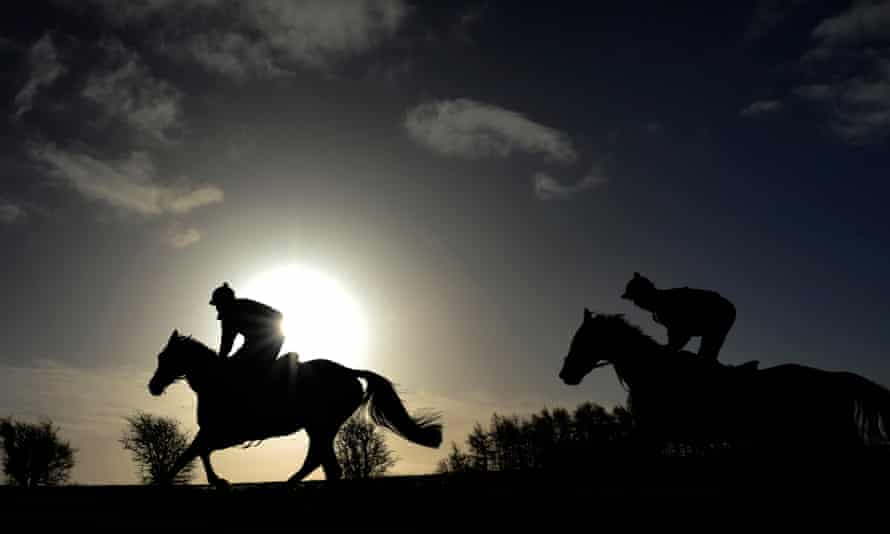 Horses making their way up the gallops at Jonjo O'Neill's Jackdaws Castle stables.