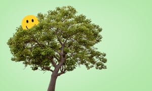 Montage of a tree with a yellow smiley face in it, against a green background