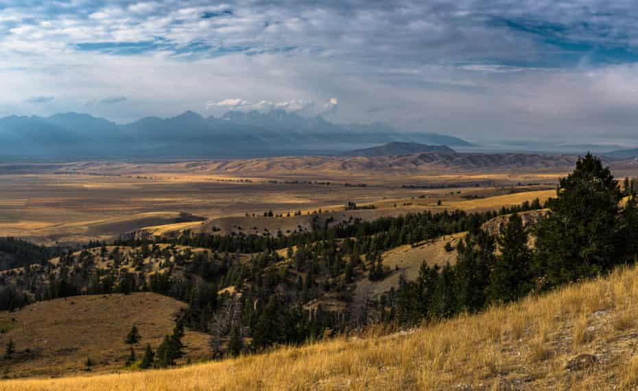 The Jackson Ranger district in the Bridger-Teton national forest