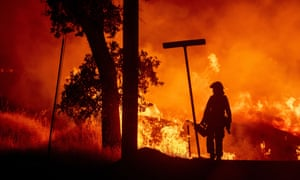 Redding, California: A firefighter lights backfires during the Carr fire