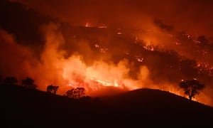 Australia bushfires are harbinger of planet's future, say scientists | Australia news | The Guardian