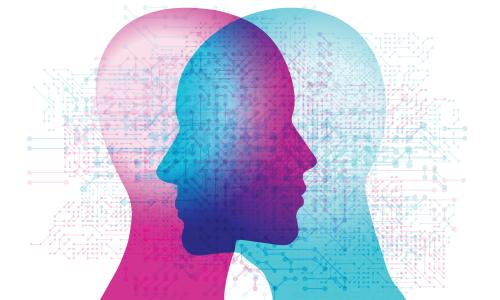 People have been looking for differences between the male and female brain since the 18th century.