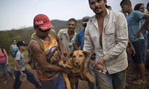 Rescuers carry an injured dog to safety in Bento Rodrigues.
