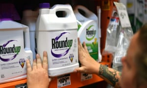 Roundup weedkiller is widely available in Australian supermarkets and hardware stores.