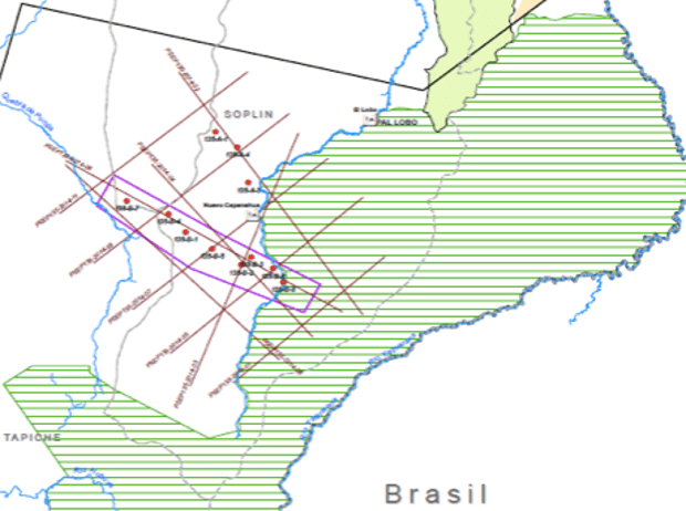 A map purportedly showing Pacific's interest in exploring in the northern part of the Sierra del Divisor National Park, marked with green stripes. Photograph: Screenshot from a Pacific map.
