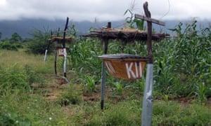 A beehive fence in Tsavo, Kenya, in 2010.