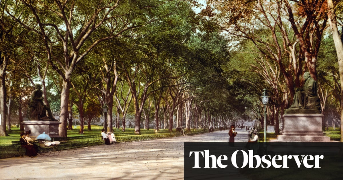 The Great Mistake by Jonathan Lee review – the best American novel of the year is by a Brit