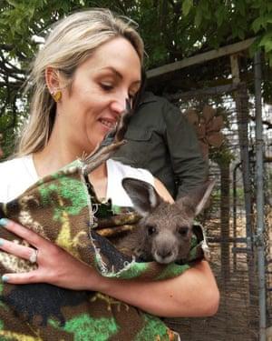 A kangaroo in a homemade blanket.