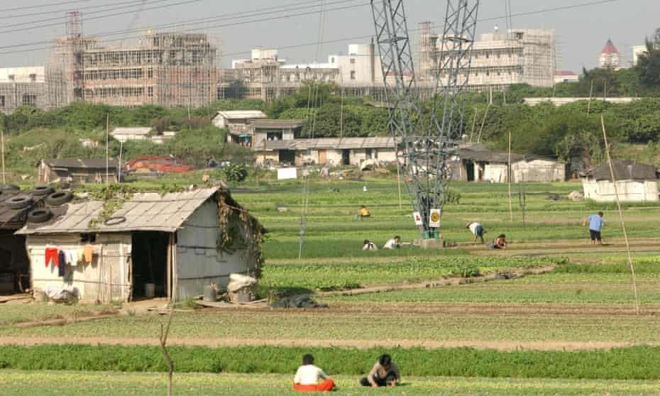 Agricultural workers tend to fields overlooked by the fast-developing towers and factories of Guangzhou.