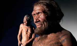 Kennis models of Homo sapiens (left) and a Neanderthal man