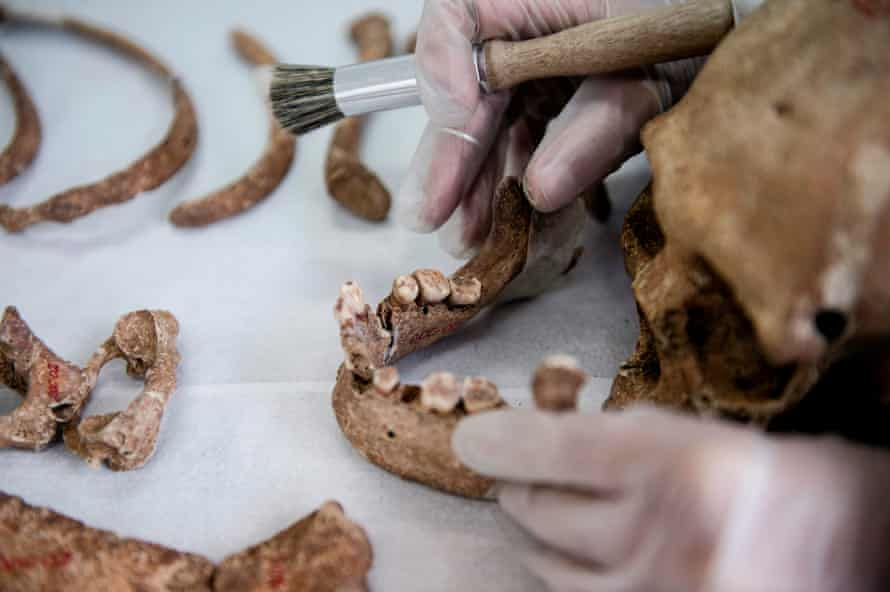 Giselle Contreras, an anthropologist at Chile's legal medical service, works on an unidentified human skeleton to demonstrate how to apply identification techniques