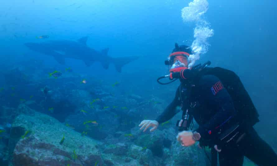 Chris Hemsworth diving with sharks.
