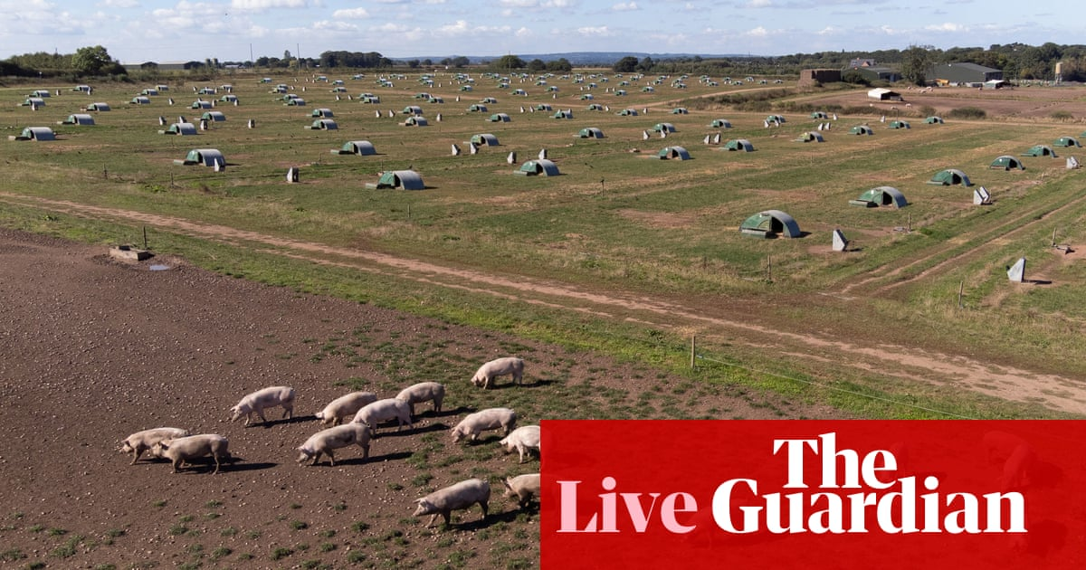 Meat producers say Johnson talking 'nonsense' about reasons for labour shortage in sector – UK politics live