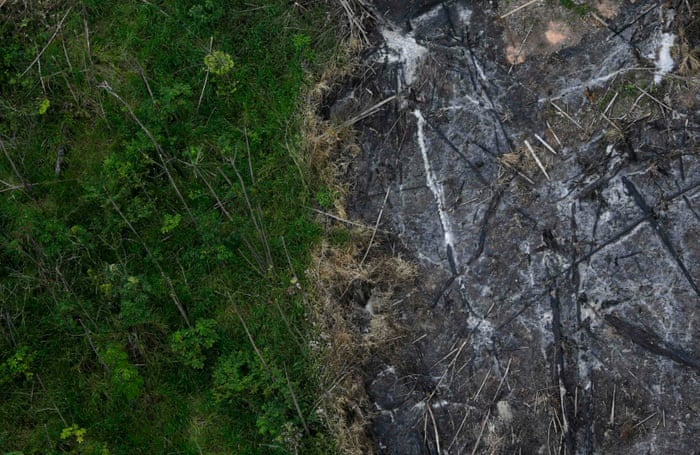 Humans have destroyed a tenth of Earth's wilderness in 25 years