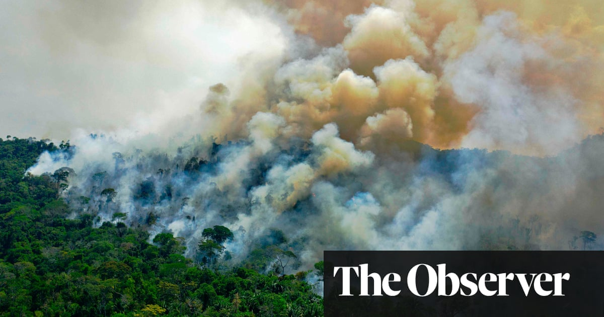 How data could save Earth from climate change
