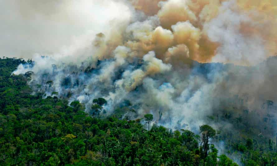 Burning Amazon rainforest