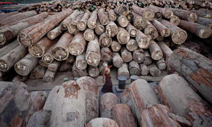 Logs on barges along the river near Yangon, Myanmar.