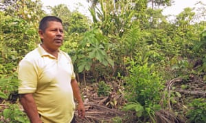 Fulgencio Quenguan stands Jan 30 next to a rogue coca bush on his farm in the village of Los Laureles, Putumayo. Though he pulled up 12 hectares of coca plants in 2004 one sturdy plant keeps growing back.