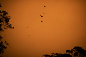 Batemans Bay Fire 2020It has been Australia's costliest natural disaster and, either directly or indirectly, affected 80 percent of Australians.