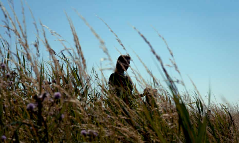Anonymous woman in a field of tall grasses against a blue sky