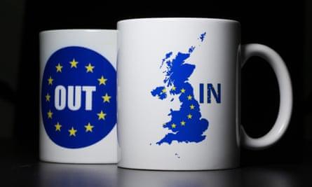 EU referendum mugs