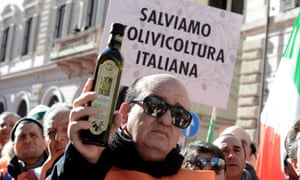 Farmers and olive growers wear orange gilets as they demand action from the government in Rome, Italy