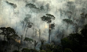 Smoke billows during a fire in an area of the Amazon rainforest near Porto Velho, Rondonia state, Brazil