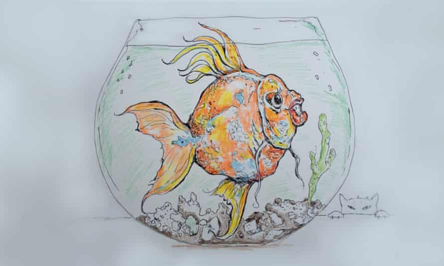 Goldfish are fun and easy pets
