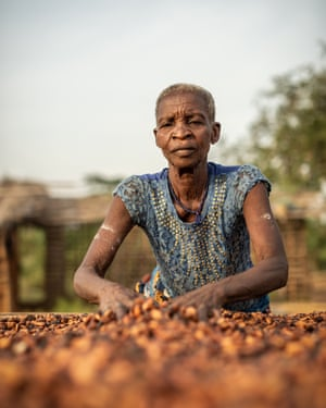 An elderly Ivorian woman sorting cocoa beans