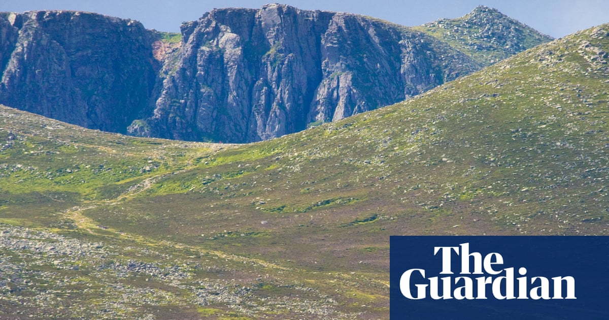 Royal family urged to lead rewilding efforts and transform estates