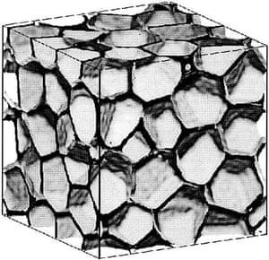 The honeycomb model