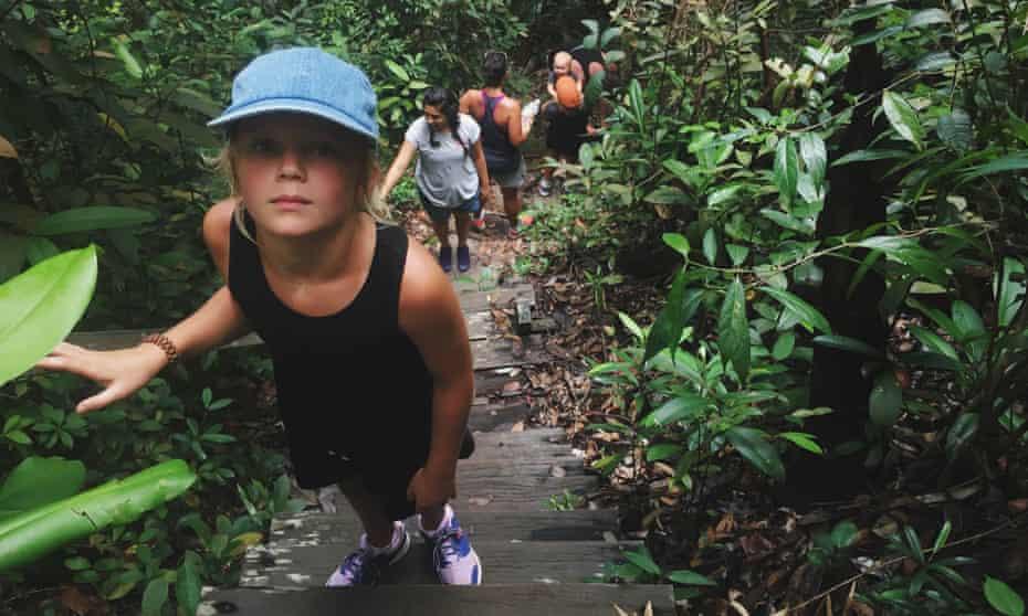 Exploring the Borneo rainforest.