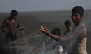 Rohingya refugees shake out fish from nets