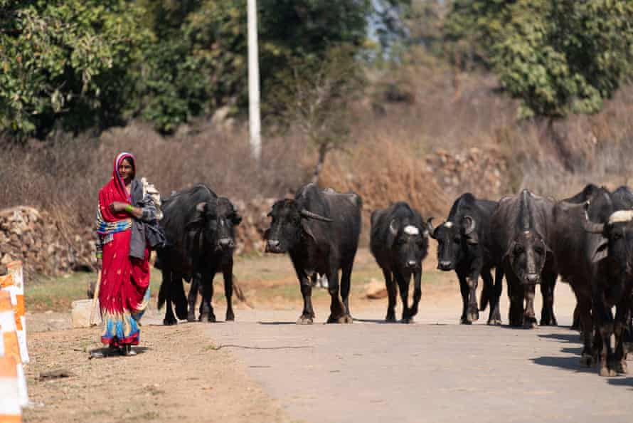 The small village of Janwaar in Madhya Pradesh, one of India's poorest states
