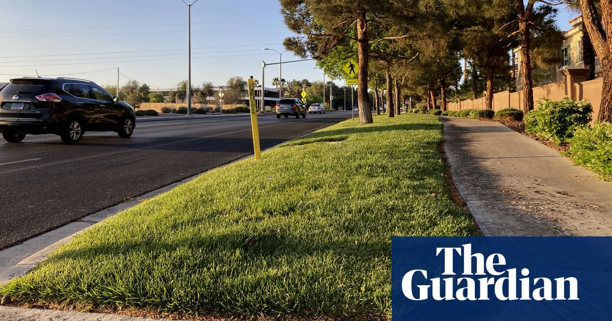 Las Vegas's new strategy for tackling drought – banning 'useless grass'
